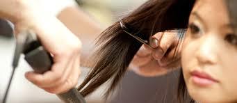 The Healthy Hair Flat Iron